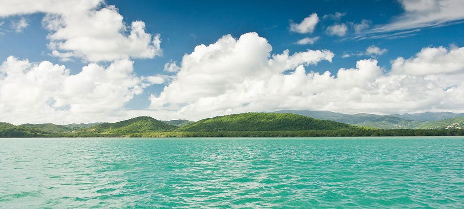 Yacht Charters: Great for Snorkelling the Whitsundays