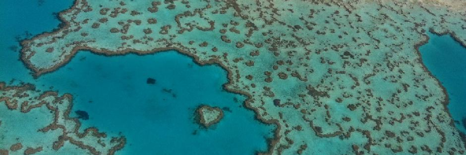 Top 5 Places to See in the Whitsundays on Your Yacht Charter