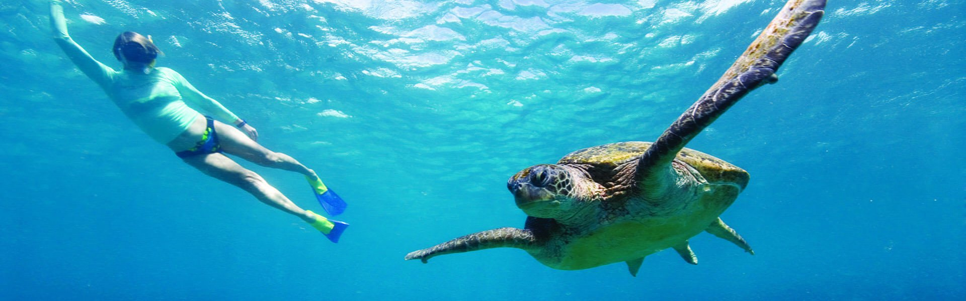 5 Reasons to Choose Queensland Yacht Charters