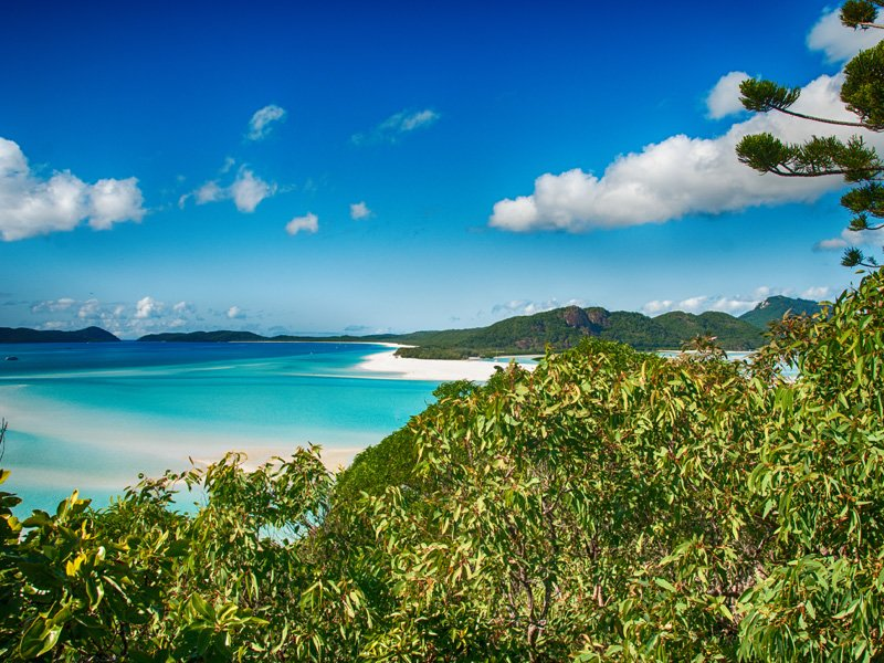 bushwalking-whitsundays