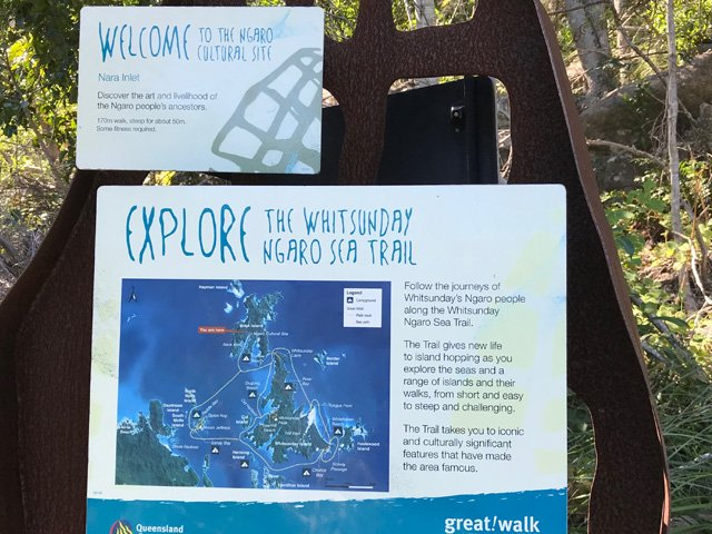 ngaro-sea-trail-bushwalking-track
