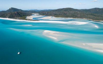 Best Time To Go To Whitsundays: Whale Season