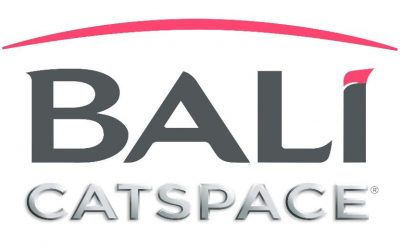 Bali Catspace 40 is Coming to the Whitsundays