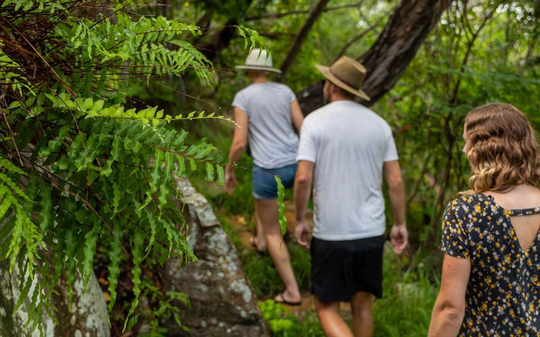 What is Ecotourism and Why is it Important?